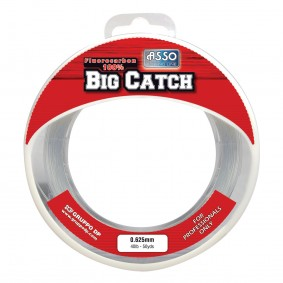 asbc72v_asso_big-catch---45-m_72-100---50-lbs_cristal_fil-nylon-tresse_3504870036222_flashmer_